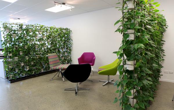 Urban Garden Vertical Plant Wall Auckland   2